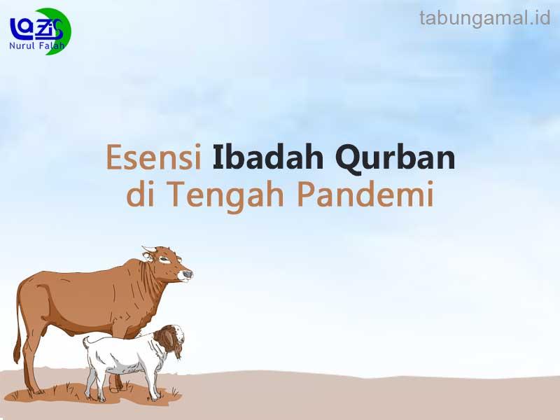 Esensi-Ibadah-Qurban-di-Tengah-Pandemi1593231458.JPG